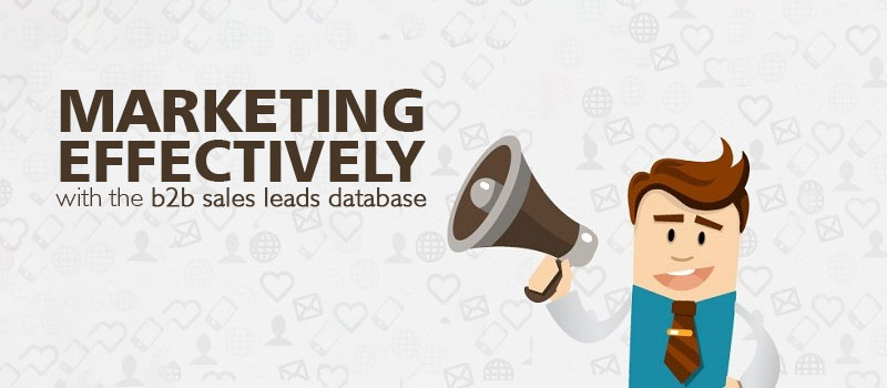 B2B sales leads database